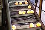 钢球生产自动化